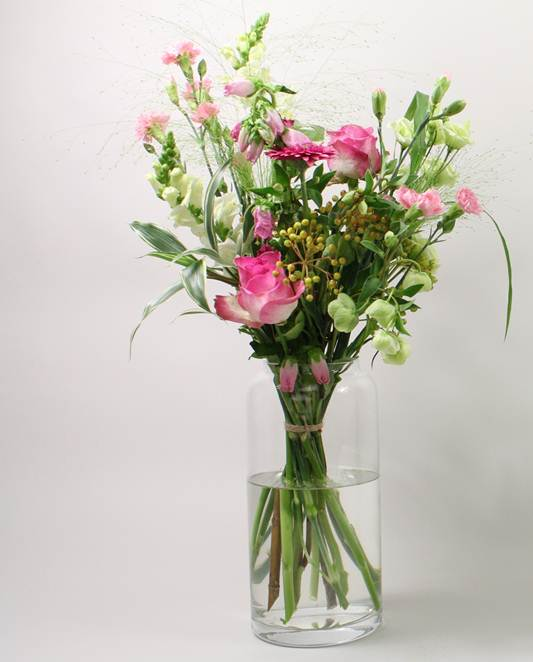 Chrysal Flower Plant Care