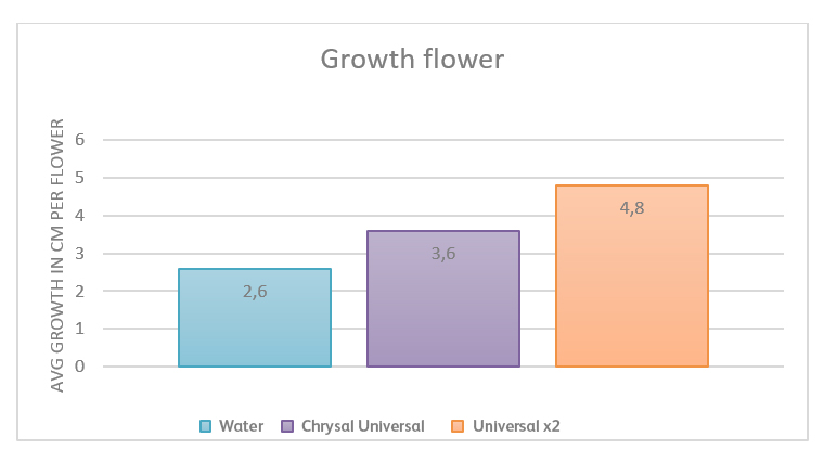 Graph growth Helianthus on flower food
