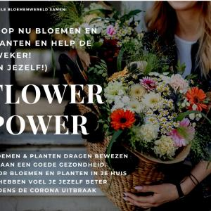 Corona Flower Power NL