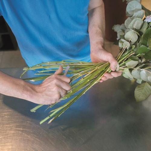 Florist cutting stems