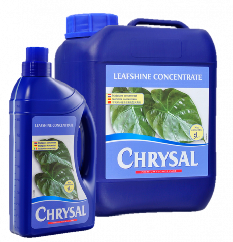 Chrysal Leafshine Concentrate